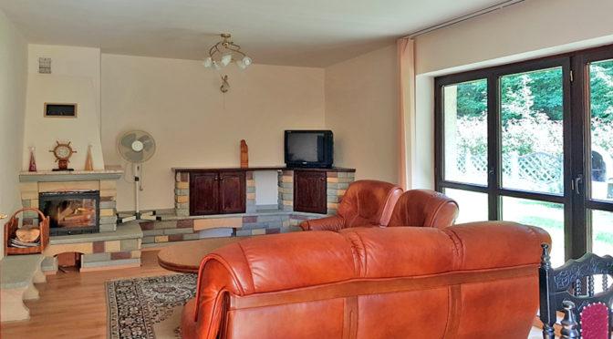 luksusowy salon z kominkiem w ekskluzywnej rezydencji do sprzedaży w okolicach Bielska-Białej