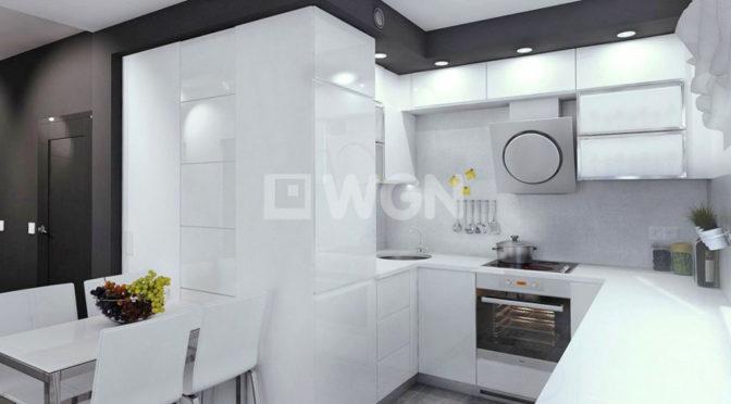 nowoczesny aneks kuchenny w luksusowym apartamencie do sprzedaży w Kwidzynie