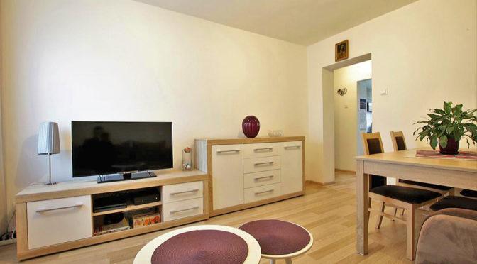 na zdjęciu stylowy salon w luksusowym apartamencie do sprzedaży w Szczecinie