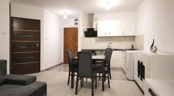 luksusowe wnętrze i aneks kuchenny w ekskluzywnym apartamencie w Szczecinie na wynajem