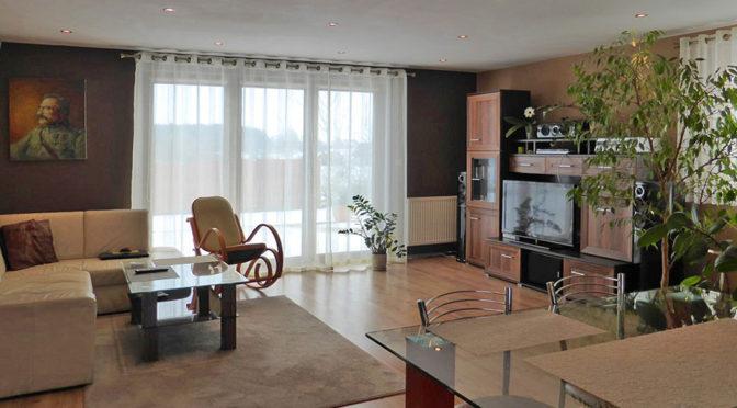 nowoczesny salon w ekskluzywnej rezydencji do sprzedaży w okolicy Malborka