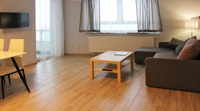 komfortowy salon w luksusowym apartamencie do wynajmu w Katowicach