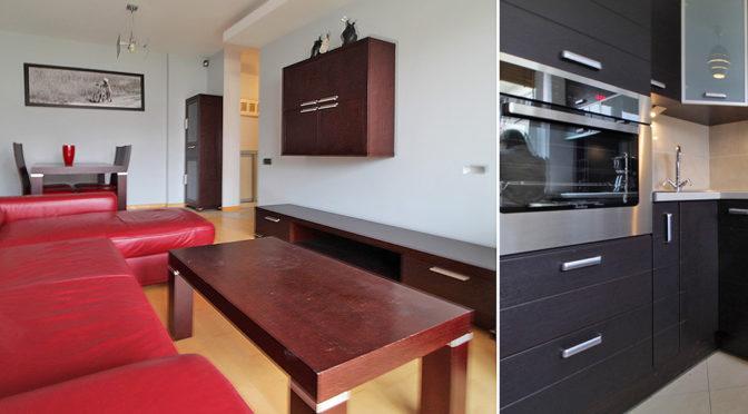 po lewej salon, po prawej aneks kuchenny w luksusowym apartamencie do wynajmu w Krakowie