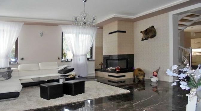 prestiżowy salon z kominkiem w luksusowej rezydencji do sprzedaży Grudziądz