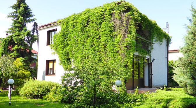 widok od strony ogrodu na luksusową rezydencję do wynajęcia Kwidzyn (okolice)