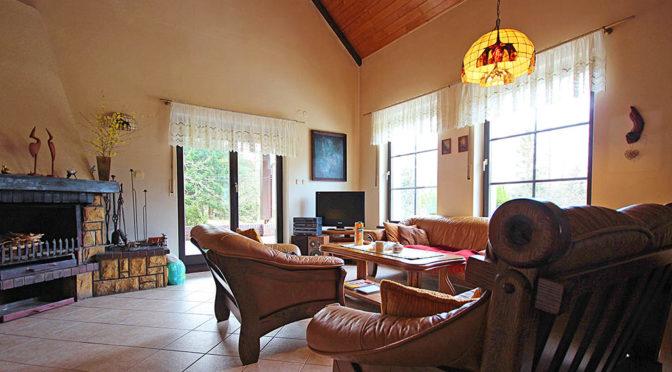 kameralny salon z kominkiem w ekskluzywnej rezydencji na sprzedaż Drawsko Pomorskie