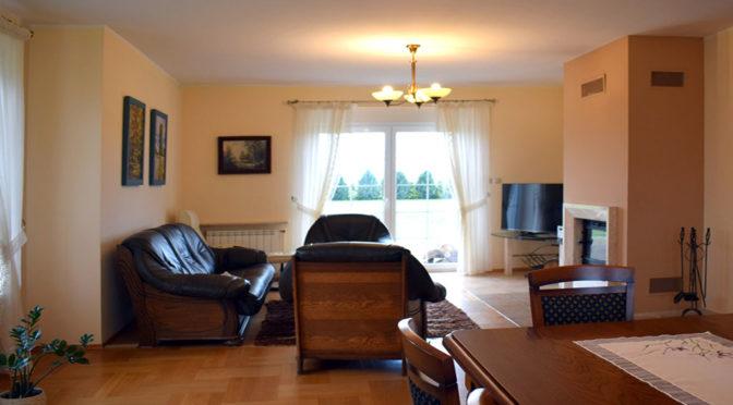 komfortowy salon w ekskluzywnej rezydencji na sprzedaż Ostrów Wielkopolski