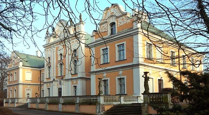 widok z boku na luksusowy pałac na sprzedaż Wielkopolska