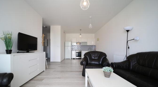 widok z salonu na aneks kuchenny w ekskluzywnym apartamencie do wynajmu Bolesławiec