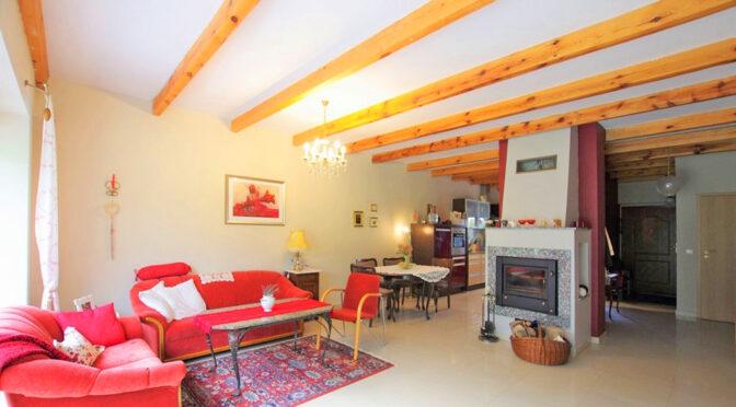 kameralny salon z kominkiem w ekskluzywnej rezydencji do sprzedaży Rawicz (okolice)