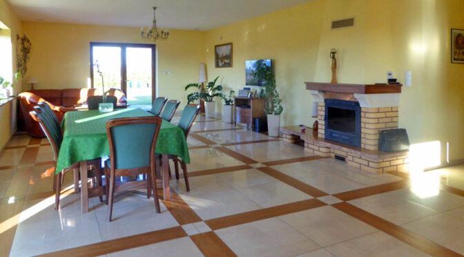 salon z kominkiem w luksusowym salonie ekskluzywnej rezydencji na sprzedaż Piotrków Trybunalski
