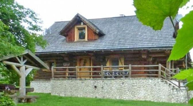 widok od strony ogrodu na luksusowy dwór do sprzedaży Częstochowa (okolice)