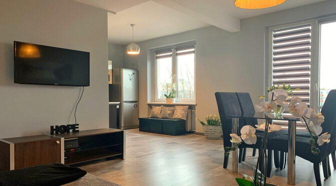 elegancko wykończony salon w luksusowym apartamencie na wynajem Konin