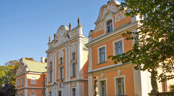 imponujący rozmachem i bogactwem luksusowy pałac na sprzedaż Wielkopolska