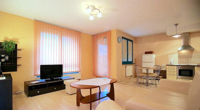 przestronne i słoneczne wnętrze luksusowego apartamentu na wynajem Szczecin